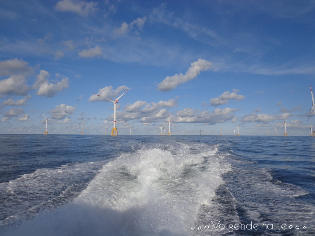 Molinos en alta mar: Fin de la jornada de trabajo