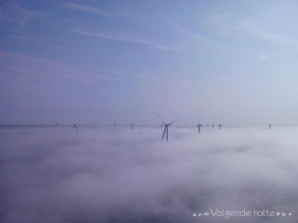 Molinos en alta mar: Molinos en la niebla
