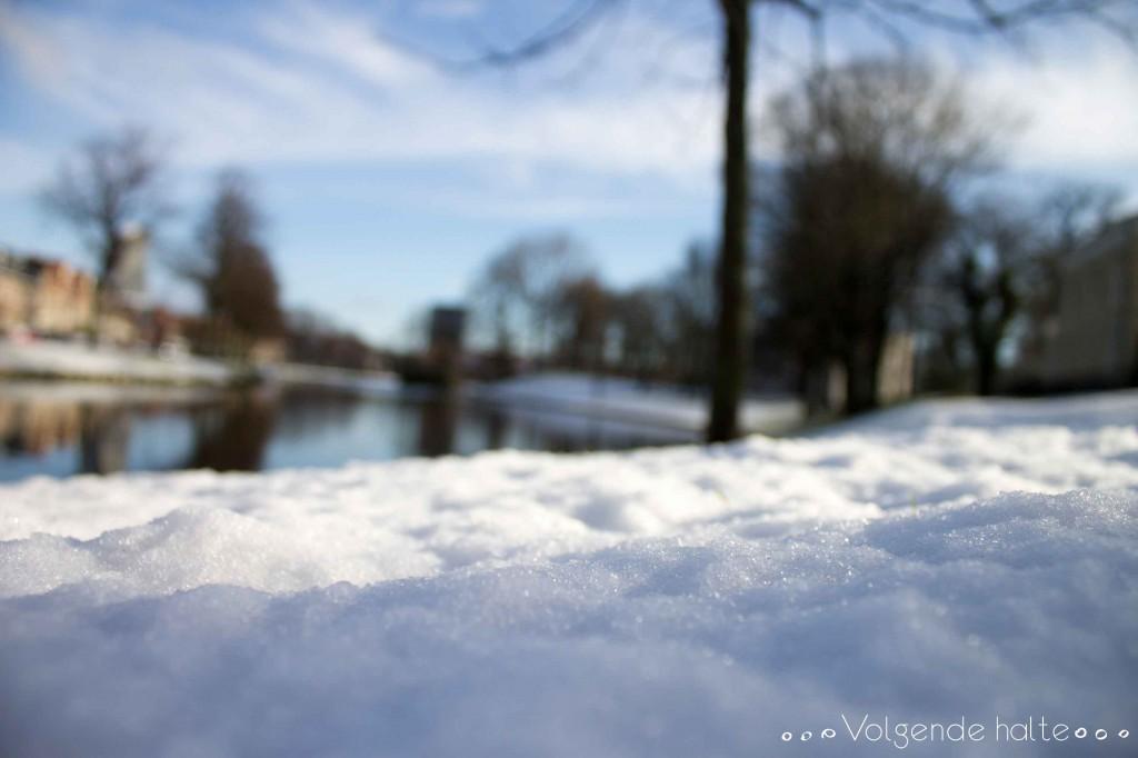 Llegó la nieve a Haarlem